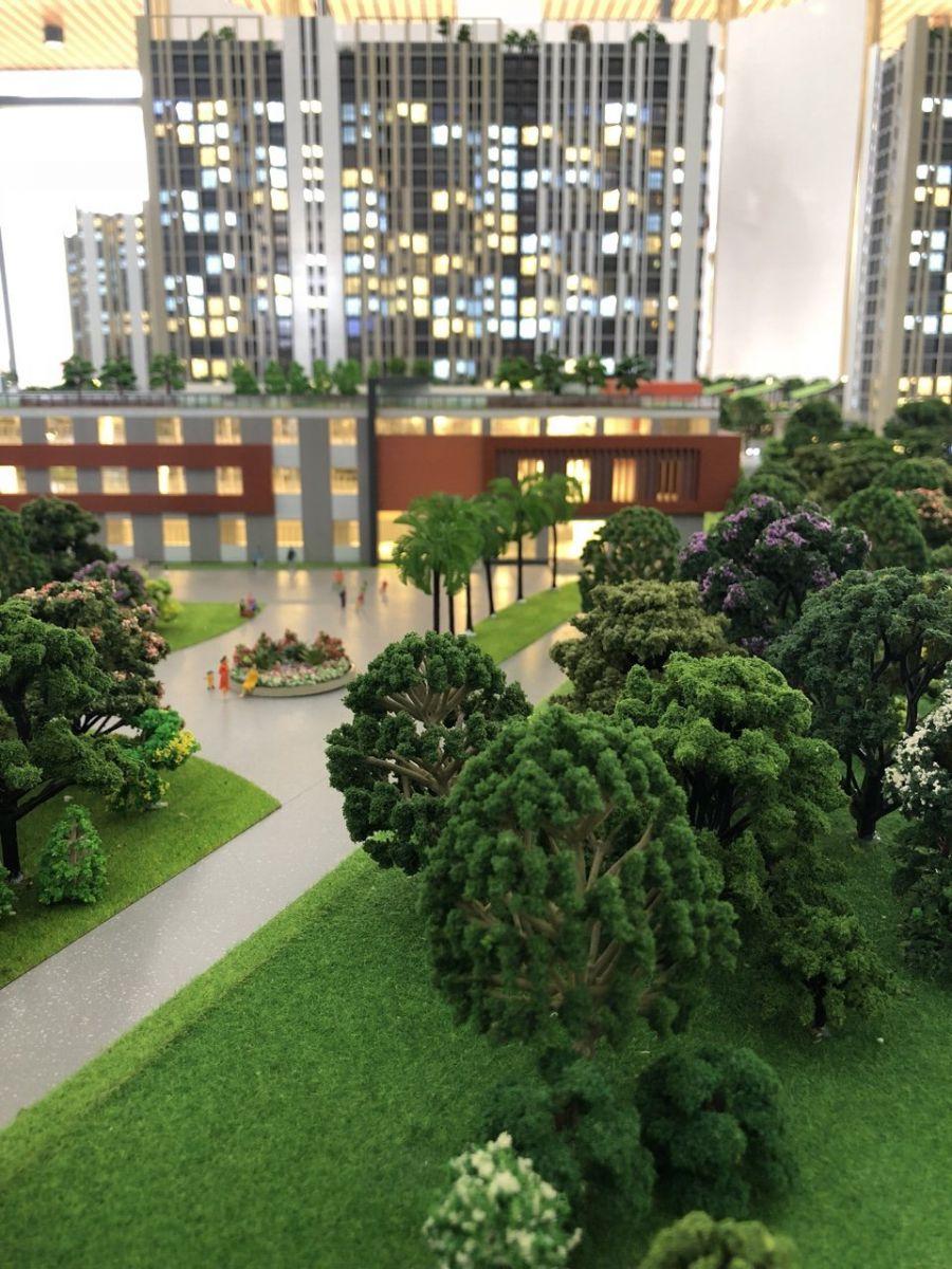 Cảnh quan cây xanh và tiện ích của căn hộ cao cấp giá rẻ Picity